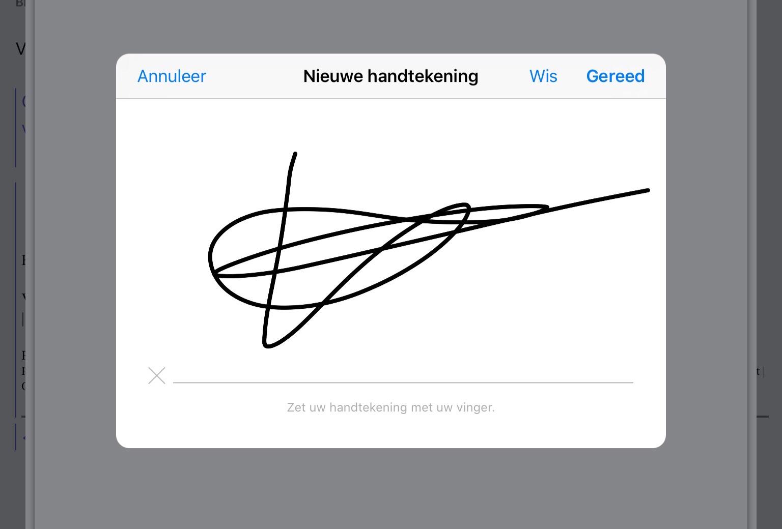 digitaal handtekening zetten word